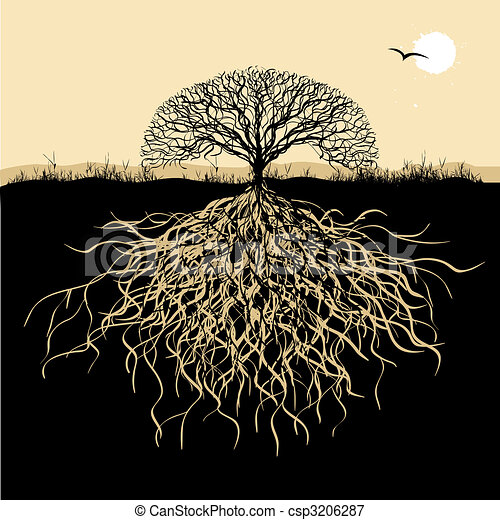 drzewo, sylwetka, podstawy - csp3206287