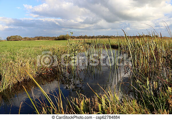 duch landscape - csp62784884