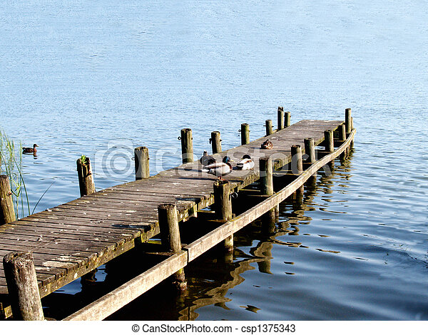 Ducks sitting on a ramp at a lake - csp1375343