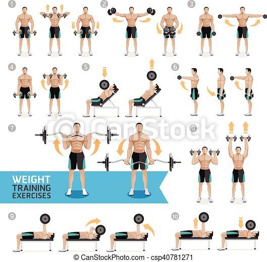 Dumbbell Exercises Weight Training Dumbbell Exercises And Workouts Weight Training Vector Illustration