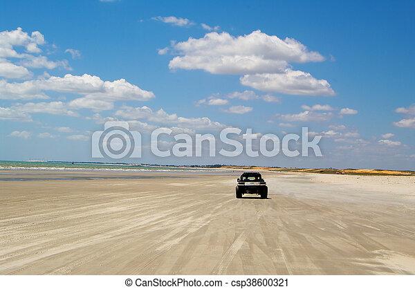Dune buggy - csp38600321