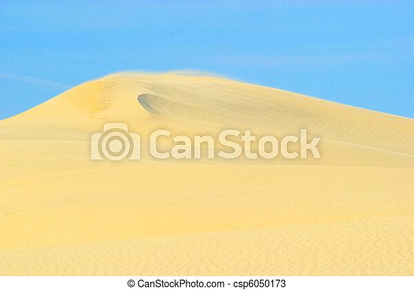 Dune du Pyla 16 - csp6050173