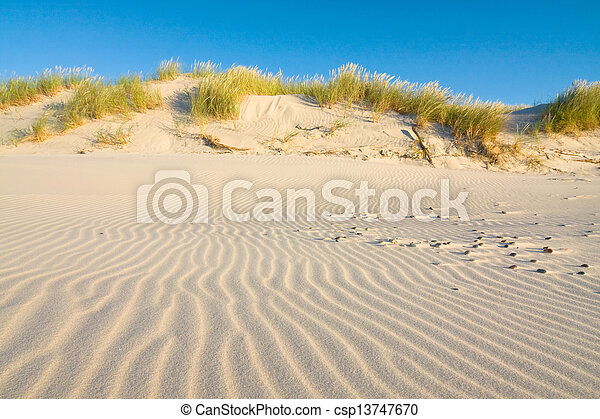 Dune on Beach at Sunset - csp13747670