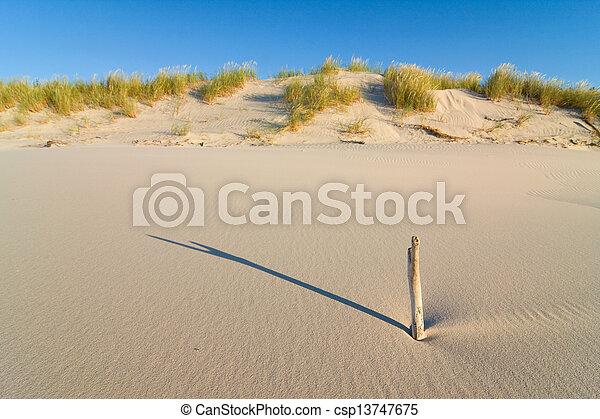 Dune on Beach at Sunset - csp13747675