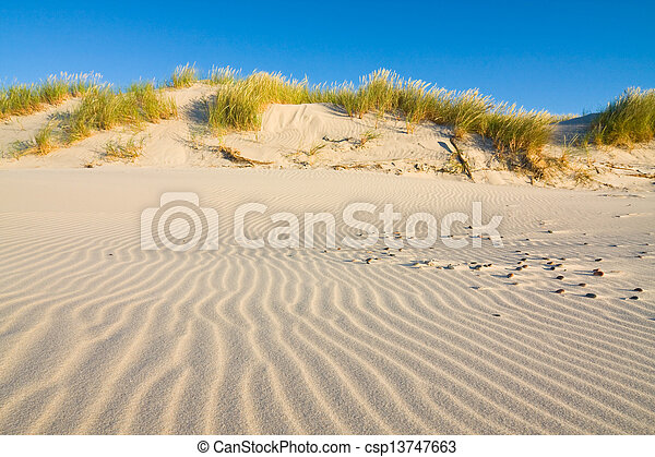 Dune on Beach at Sunset  - csp13747663