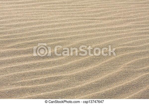 Dune on Beach at Sunset  - csp13747647