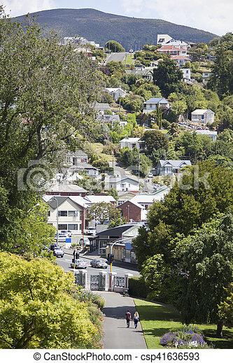 Dunedin Residential Hills - csp41636593