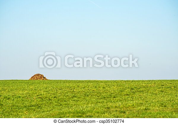 dung hill on a green meadow - csp35102774