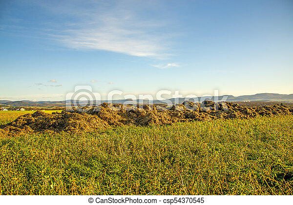 dung hill on a meadow with the German highlands Alb - csp54370545