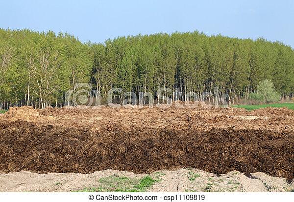 Dung hill - csp11109819