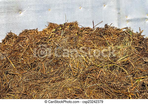dung hill - csp23242379
