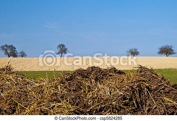 dung hill - csp5824285
