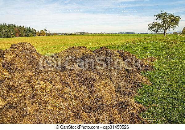 dung hill - csp31450526