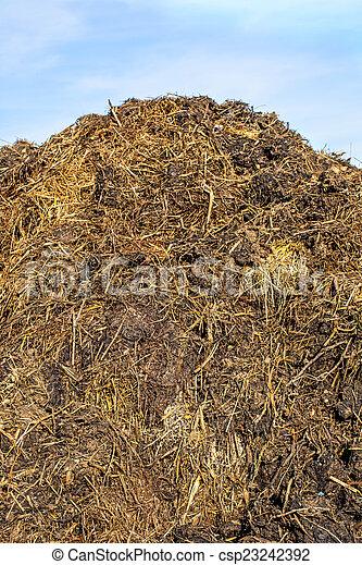 dung hill - csp23242392