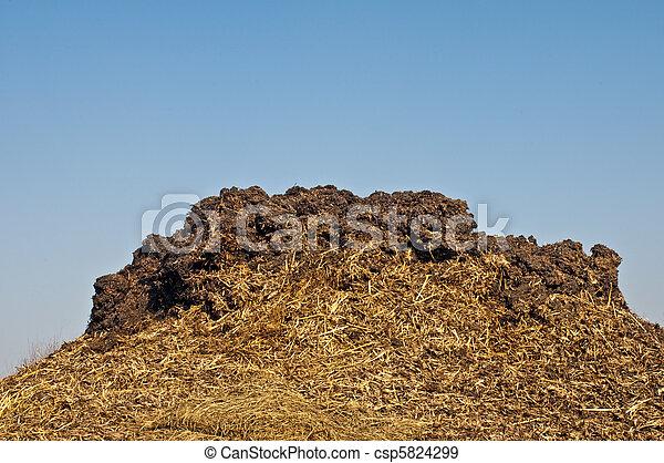 dung hill - csp5824299