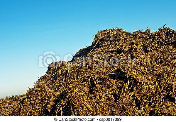 dung hill - csp8817899