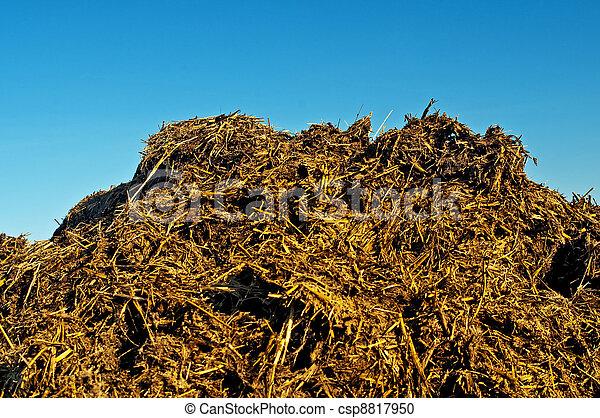dung hill - csp8817950