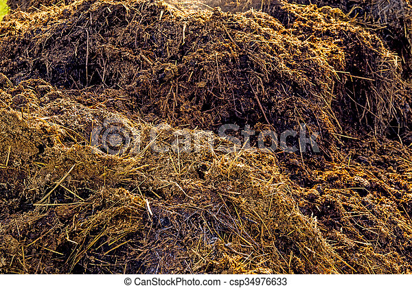 dung hill - csp34976633