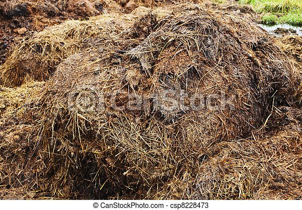 dung hill - csp8228473