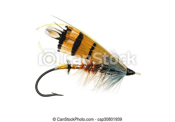 Durham Ranger Salmon Fly  - csp30801939