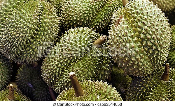 Durian fruits in close up - csp63544058