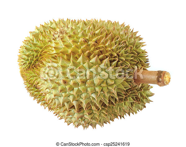 durian isolated on white background - csp25241619