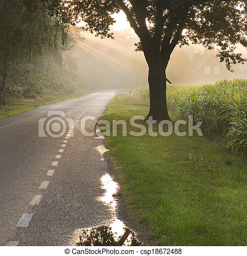 Dutch country road and farm with sunbeams - csp18672488
