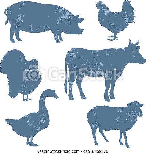 dyr farm - csp16359370