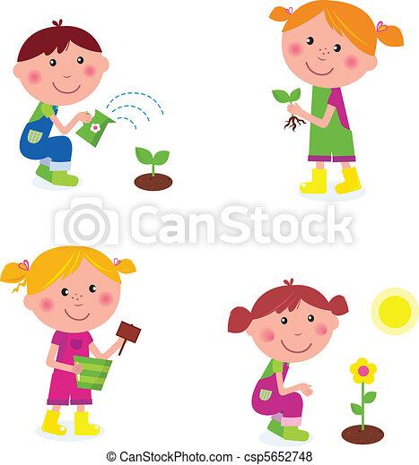 dzieci, ogrodnictwo, zbiór - csp5652748