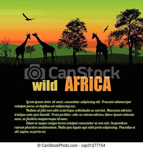 dziki, afisz, afryka - csp31277154