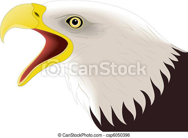 Eagle 2 - csp6050396