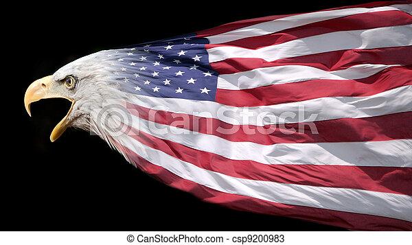 Eagle and flag - csp9200983
