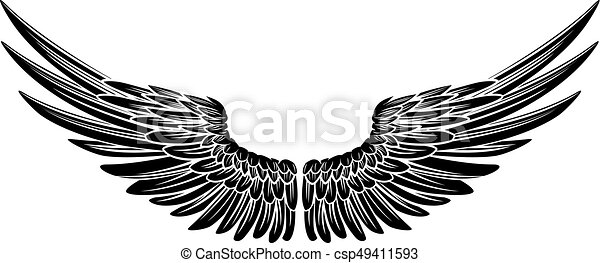 Eagle Bird Or Angel Wings Eagle Bird Or Angel Wings Pair Spread Out