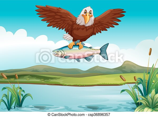 Eagle Catching Fish Drawing Eagle catching fish in...