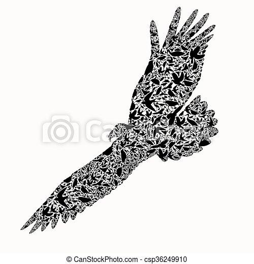 eagle composite of bird ,vector ill - csp36249910