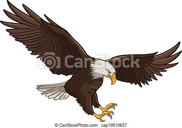 vector illustration of a bald eagle isolated on a white background rh canstockphoto com bald eagle silhouette vector bald eagle vector free download