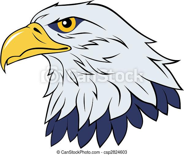 eagle color vector illustration of eagle head