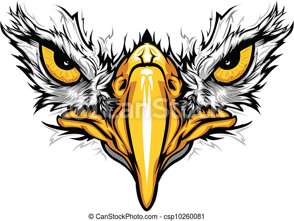 Eagle Eyes And Beak Vector Illustration Graphic Vector Mascot Image