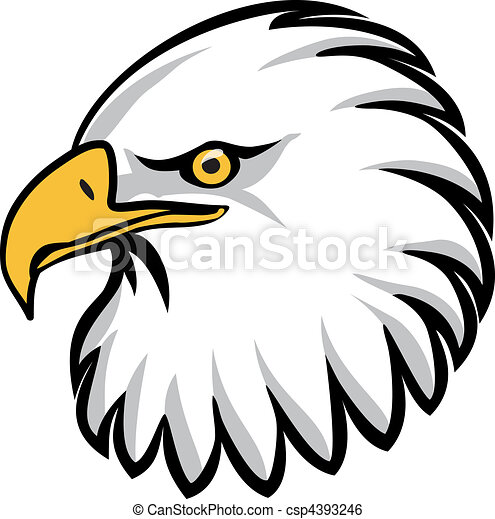 eagle head stylised drawing of an eagles head rh canstockphoto com eagle head clipart free eagle head mascot clipart