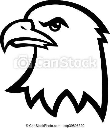 Eagle Head - csp39806320