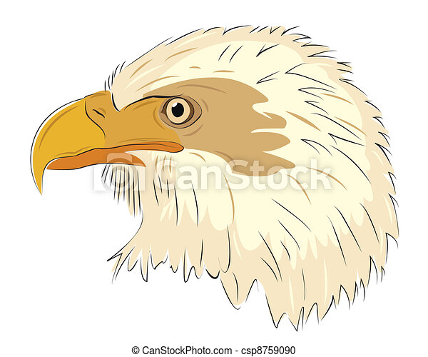 Eagle head isolated on white background - csp8759090