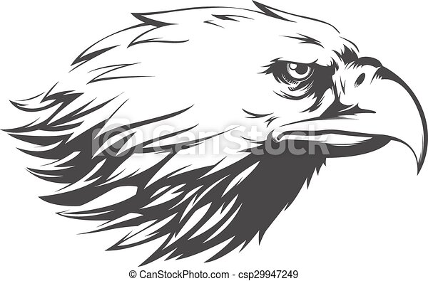 Eagle Head Vector - Side View Silhouette - csp29947249