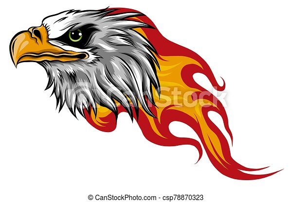 Eagle Head with Flames vector illustration design - csp78870323