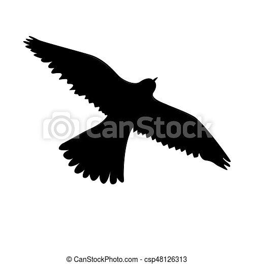 Eagle icon black color - csp48126313
