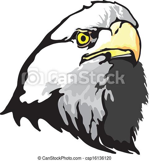 Eagle - csp16136120