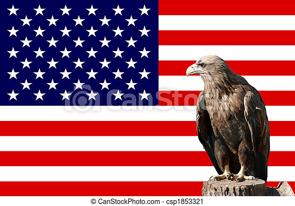 eagle in-front of the american flag - csp1853321