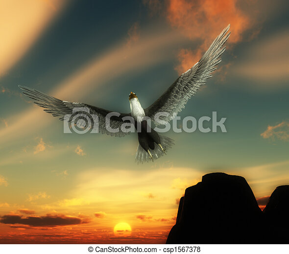 Eagle In Sky An Flying High The Stock Illustration