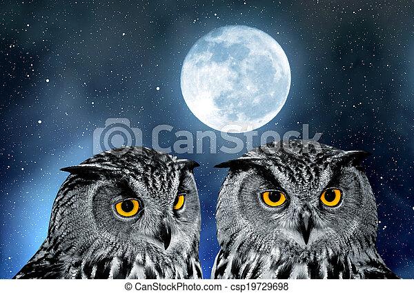 Eagle Owl - csp19729698