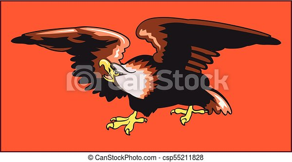 eagle predatory bird color image of an eagle a bird