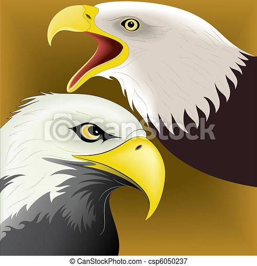 Eagle set colored 1 - csp6050237